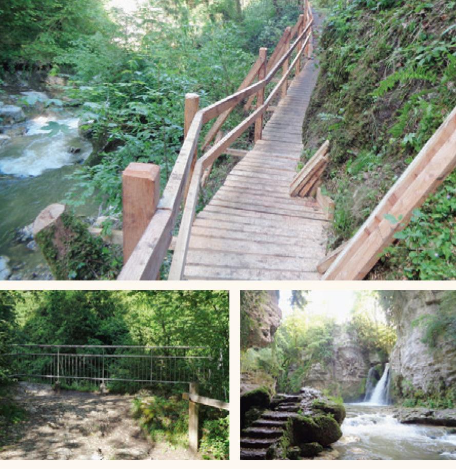 La Sarraz – Des bénévoles ont refait le chemin de la Tine de Conflens