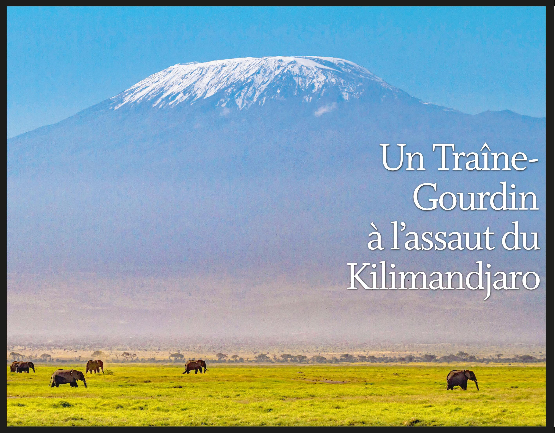 Un Traîne-Gourdin à l'assaut du Kilimandjaro