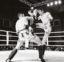 La Sarraz – L'art de la boxe thaï