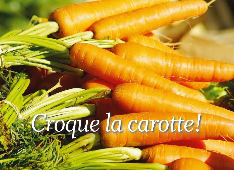 Le coin jardin. Croque la carotte !