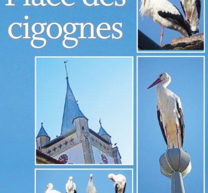 Cossonay, Place des cigognes