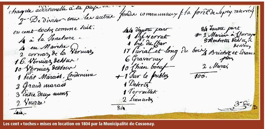 Trésors d'archives. L'insurrection des femmes en 1805