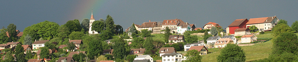 Vufflens-la-Ville, Conseil  Communal.