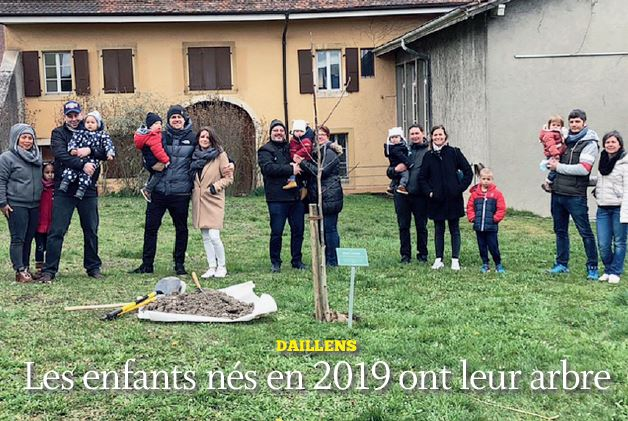 Daillens, les enfants nés en 2019 ont leur arbre