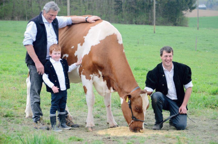 Pampigny, une famille d'éleveurs fête une famille de laitières
